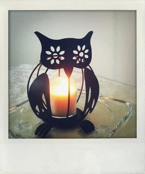 OWL。 - Quality Of Life??