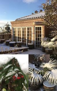 雪の日 - 水鏡 mizukagami