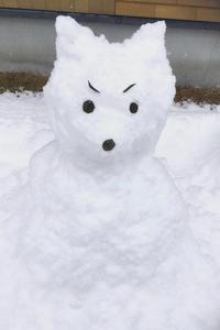 ■■ 33年ぶりの大雪!!みたいです・・ - Tatu-tatu兄やんBlog