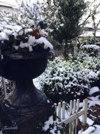 Il neige - Foretoile~フォレトワール~ アトリエと日々のこと