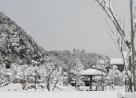 雪の郡上八幡。 - 移動探査基地