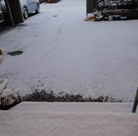 雪の日のお稽古 - うまこの天袋