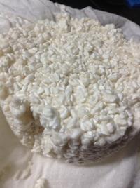 米麹をつくる - チーズとかぼちゃと猫と森の中
