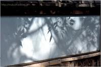 光と影 - muku3のフォトスケッチ
