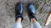 短い長靴?? - 五十路を過ぎてブログに挑戦