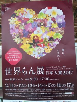 2月『寄植えの芸術展』in 東京ドーム『世界らん展』 - 横浜山手ガーデニング倶楽部