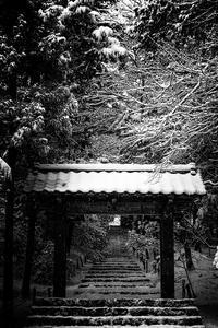 常照皇寺の雪景色! - Prado Photography!