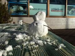 1月15日(日)、神戸は昨夜の雪が残っています - フォトカフェ情報
