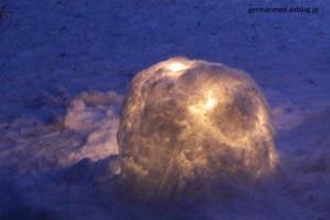 雪遊びセラピー - 黒い森の白いくまさん