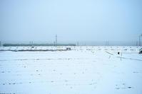 湖西線雪景 - あ お そ ら 写 真 社