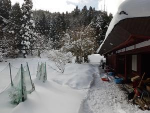 雪が止まらない - きょうも久多日和京都市最北の山里から