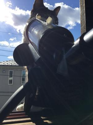太陽の黒点が見えた!  - 超小型飛行体研究所ブログ