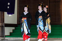 花街の始業式(祇園甲部) - 花景色-K.W.C. PhotoBlog