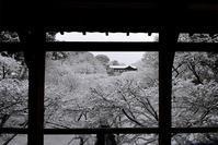 臥雲橋と通天橋の雪景色 - ちょっとそこまで