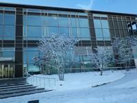 『雪でした・・・・・』 - 自然風の自然風だより