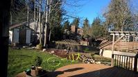 冬枯れの庭はリス達の遊び場 - コテージ便り