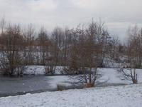 ソリ滑り - ドイツで手作り田舎ぐらし