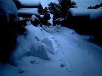 大雪 - 情報開発研究会_blog