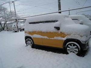 「この冬の初雪になりました」 - 東浦の葡萄屋石田農園の作業日記