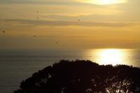 1月6日初撮影会~江の島からの夕日 - ことのは