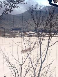 雪景色 京都 - 石のコトバ
