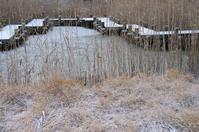 ■ くろんど池の楽しみ - 自由写真帳