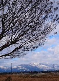 雪の風景 - 気づいたことを残したいだけ。