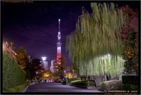 スカイツリー from 浅草 - TI Photograph & Jazz