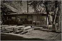 ちょこっと川越 喜多院あたり #002 - ルリビタキの気まぐれPATA*PATA