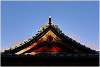 ちょこっと川越 喜多院あたり #003 - ルリビタキの気まぐれPATA*PATA