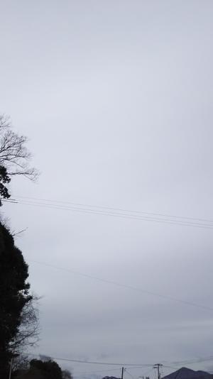 広島市は寒さはすこし緩み、曇り空 - 広島瀬戸内新聞ニュース(社主:さとうしゅういち)