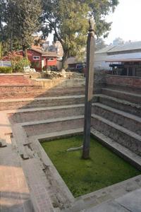 ネパール、街の中心にある池、井戸 - アーバン・ガーデン・ウォッチング