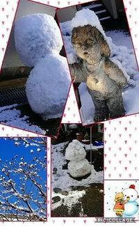 SNOW'S  DAY - ゆる~く、生きていこっ。