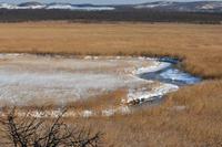 1月の釧路湿原② - Photo Of 北海道大陸