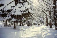 雪道 - PENTAX 2nd