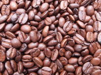 珈琲豆も販売しています - アオモジノキモチ