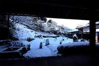 東福寺・光明院 雪景色 - ちょっとそこまで