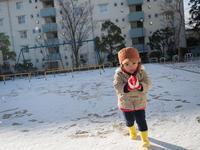 雪の朝 - デーライトなスナップ