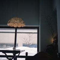 ランプシェード - 金色の麒麟が眺める世界