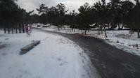 雪が降れば仕事も… - 木こりの気ままなLIFE STYLE。