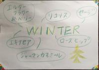 ハーブティー:クリスマスブレンド「WINTER」「NOEL」 - 英国メディカルハーバリスト