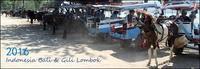 #目次:Indonesia Bali & Gili Lombok & プチ Malaysia - 霜月-師走 2016! - a Day a Sky
