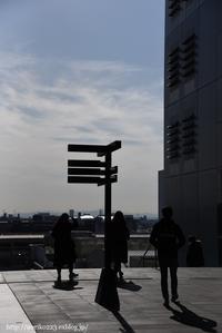小春日和の午後 - Noriko's Photo  -light & shadow-
