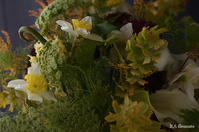 1月のレッスンレポート(bouquet secret) - Rieko Ando  RA fleuriste blog