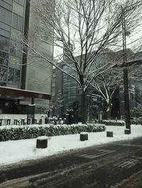 雪 - 京都で不動産・中古マンションを探すなら「京都マンション・戸建ナビ」