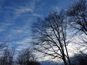 週末の天気と気温(1月3週目) - 北軽井沢スウィートグラス