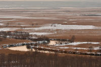1月の釧路湿原④ - Photo Of 北海道大陸