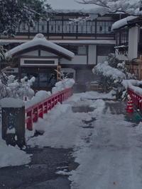 1月19日 自宅でのんびり - おぃちゃんのデジ散歩