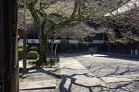 奥吉野 - 秋を旅する - 俳句手帳