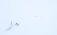 静かな冬の日 - ユルリ ユルリト。